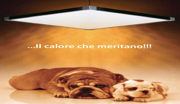RISCALDAMENTO-CANILI-005